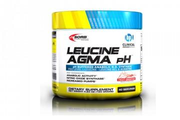 Leucine-Agma-pH-Review