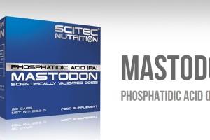 Scitec-Mastodon