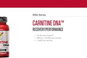 BSN-Carnitine-DNA-Series