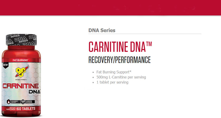 BSN-Carnitine-DNA-Series