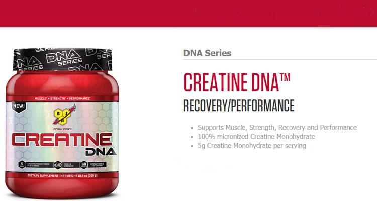 BSN-Creatine-DNA-Series