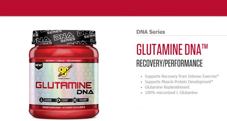 BSN-Glutamine-DNA-Series