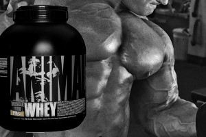 Universal-Nutritional-Animal-Whey-Reviews