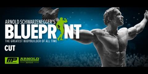 Blueprint-to-Cut-Interview-with-Arnold-Schwarzenegger